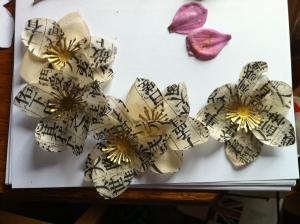 anemones plus petals